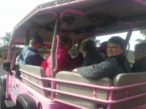 Pink Jeep Tour